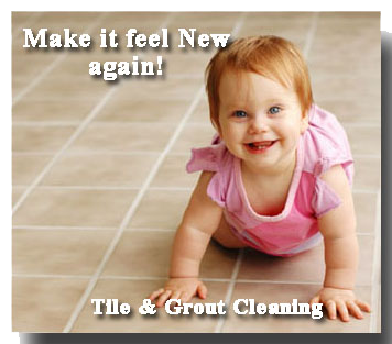 briteswipe tile cleaning
